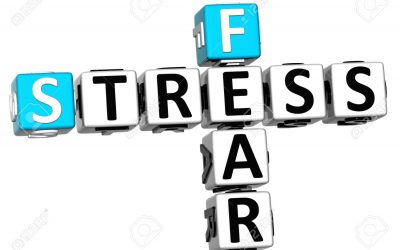 "November 5 Adult Education ""Breaking the Cycle of Stress and Fear"""